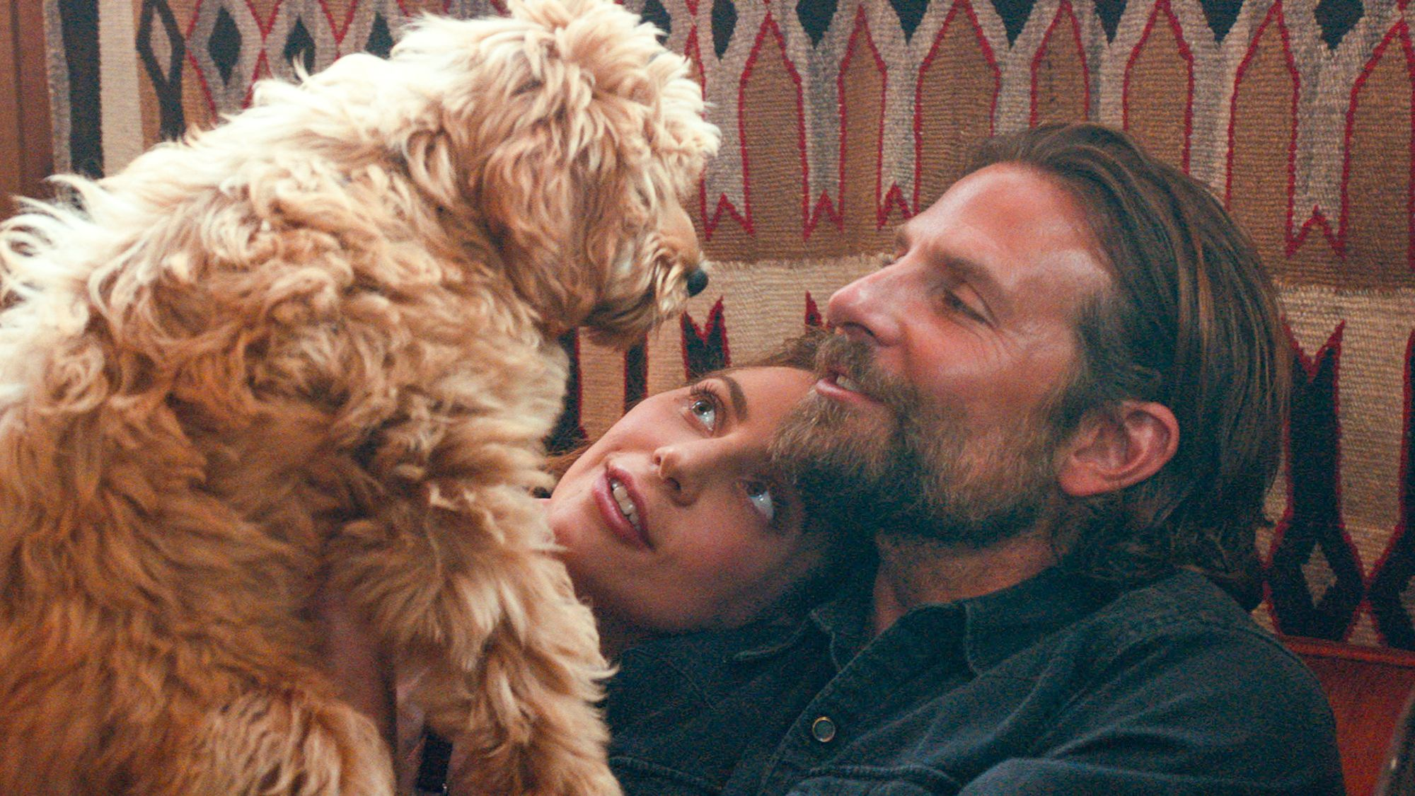 Bradley-Cooper-s-Dog-Is-the-Real-Star-of-A-Star-Is-Born