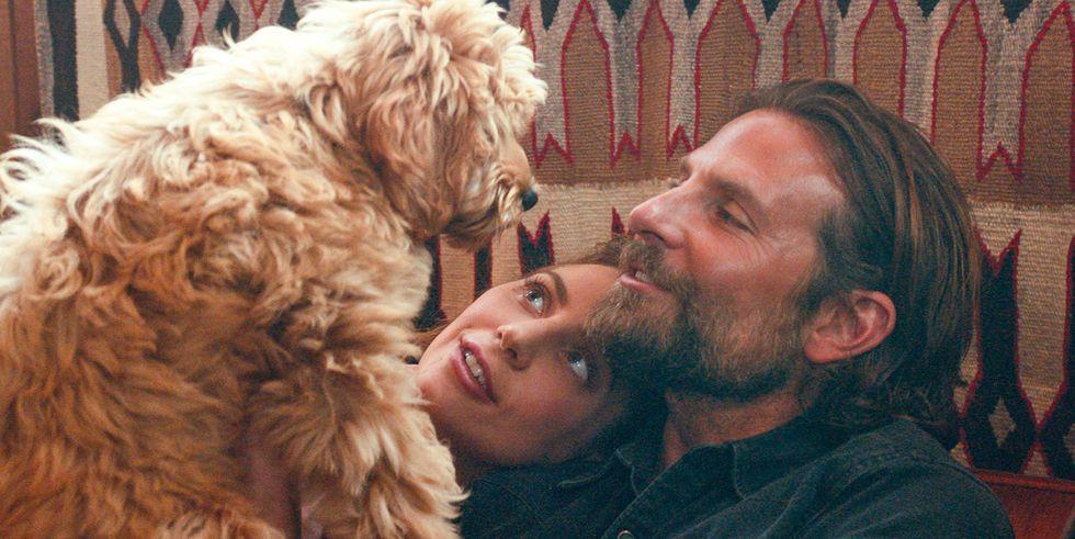 Bradley Cooper and Charlie