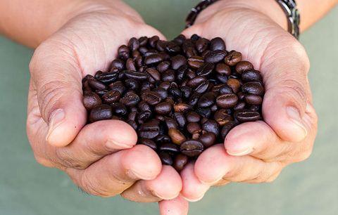 brain-healthy-coffee-1
