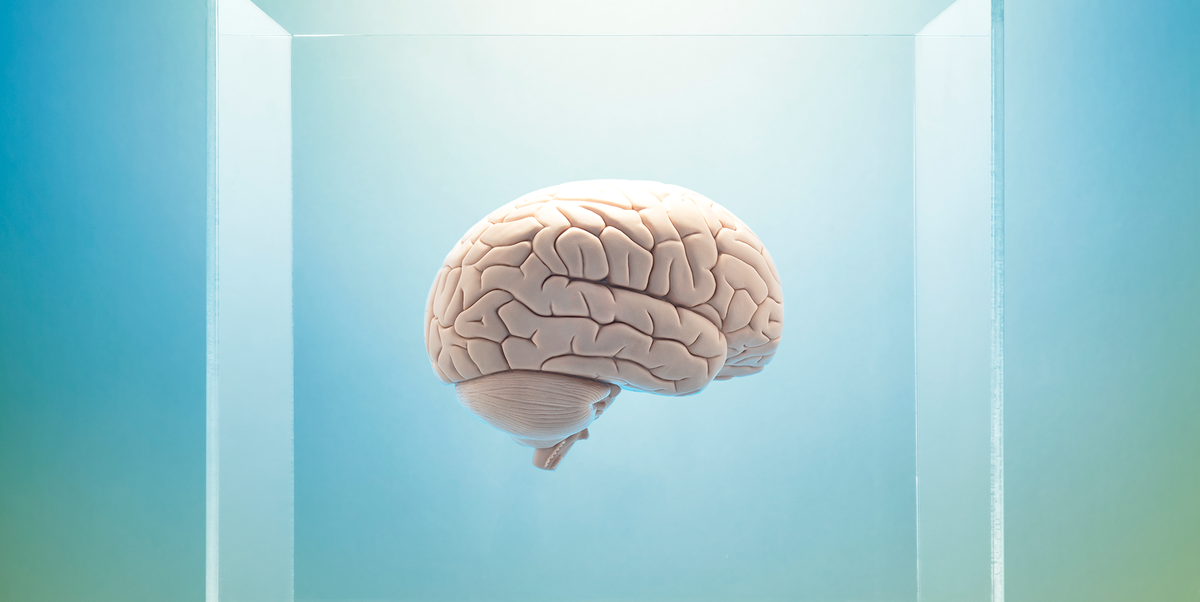 3 Incredible Breakthroughs That Are Transforming Our Understanding of the Brain