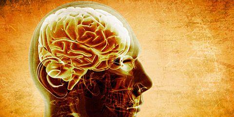 Brain in Dude's Head