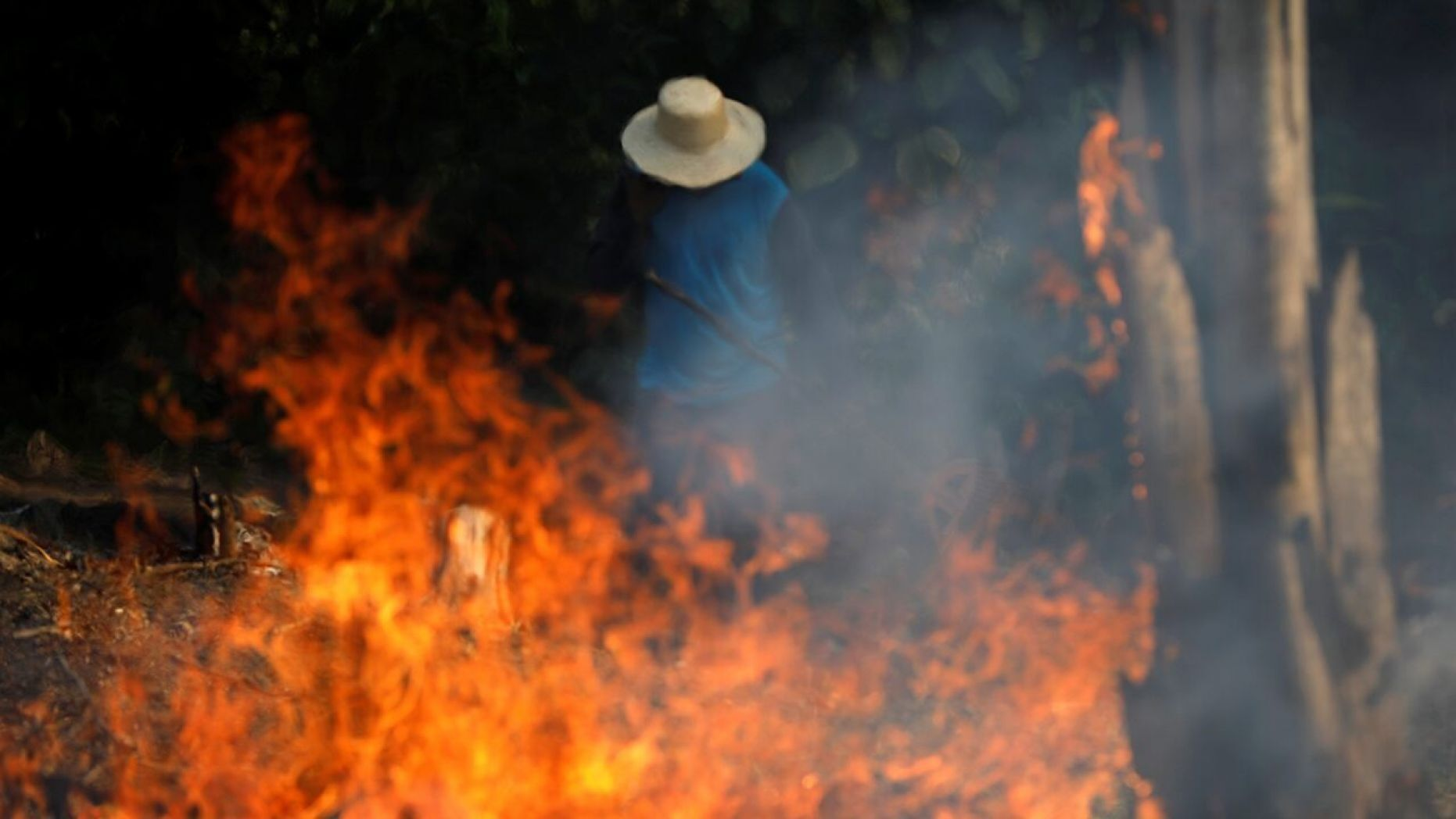 These Photos Show the Devastation Taking Place in the Amazon Rainforest