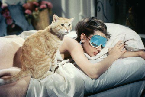 cat, audrey hepburn, breakfast at tiffany's, movie
