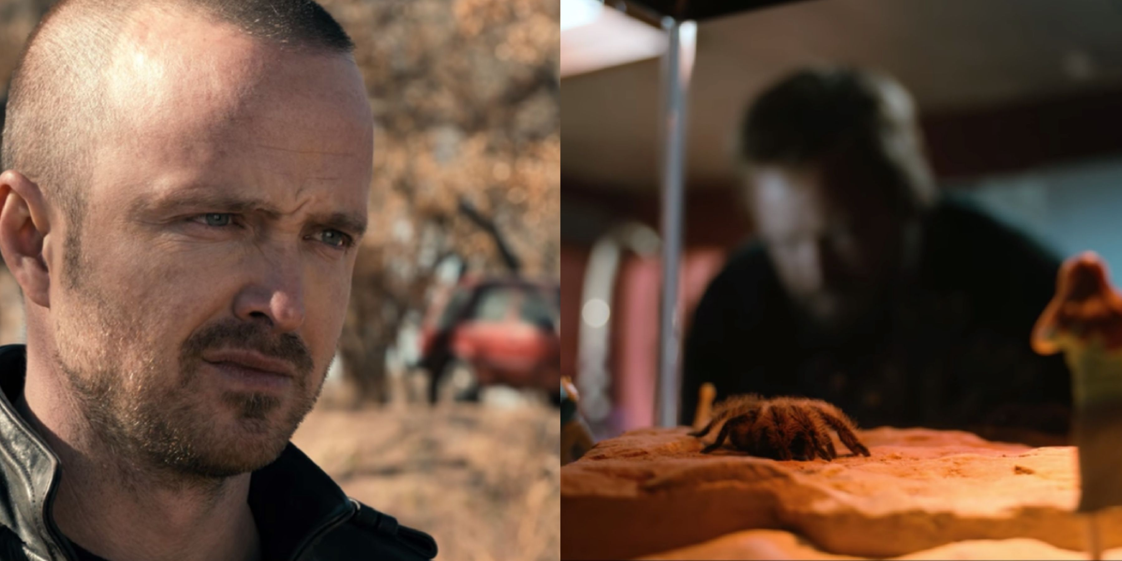 El Camino Christmas Cast.Every Breaking Bad Easter Egg In El Camino From Brock To