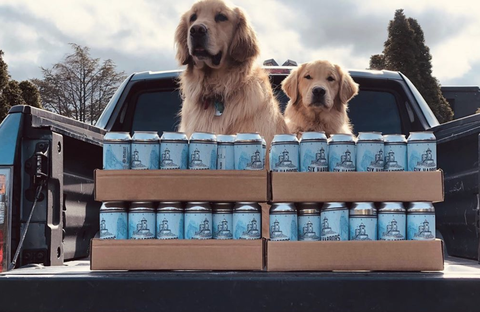 brewery dogs at six harbors brewing company