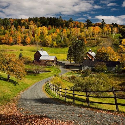 Fall Foliage Bright Fall leaves around Sleepy Hollow Farm on Cloudland Road Woodstock Vermont