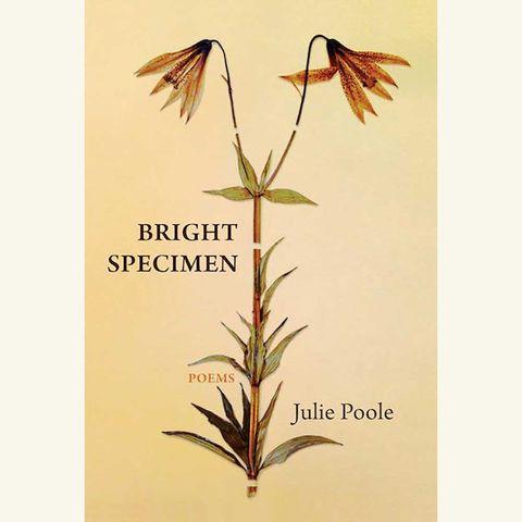 bright specimen, julie poole