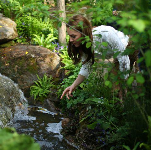 Chelsea Flower Show - Kate Middleton, RHS Back to Nature Garden