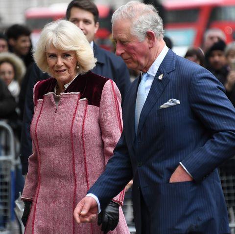Camilla's Reaction to Prince Charles's Coronavirus Diagnosis