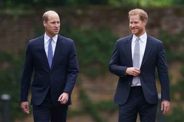 los príncipes harry y guillermo