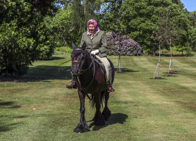 queen elizabeth on a horse