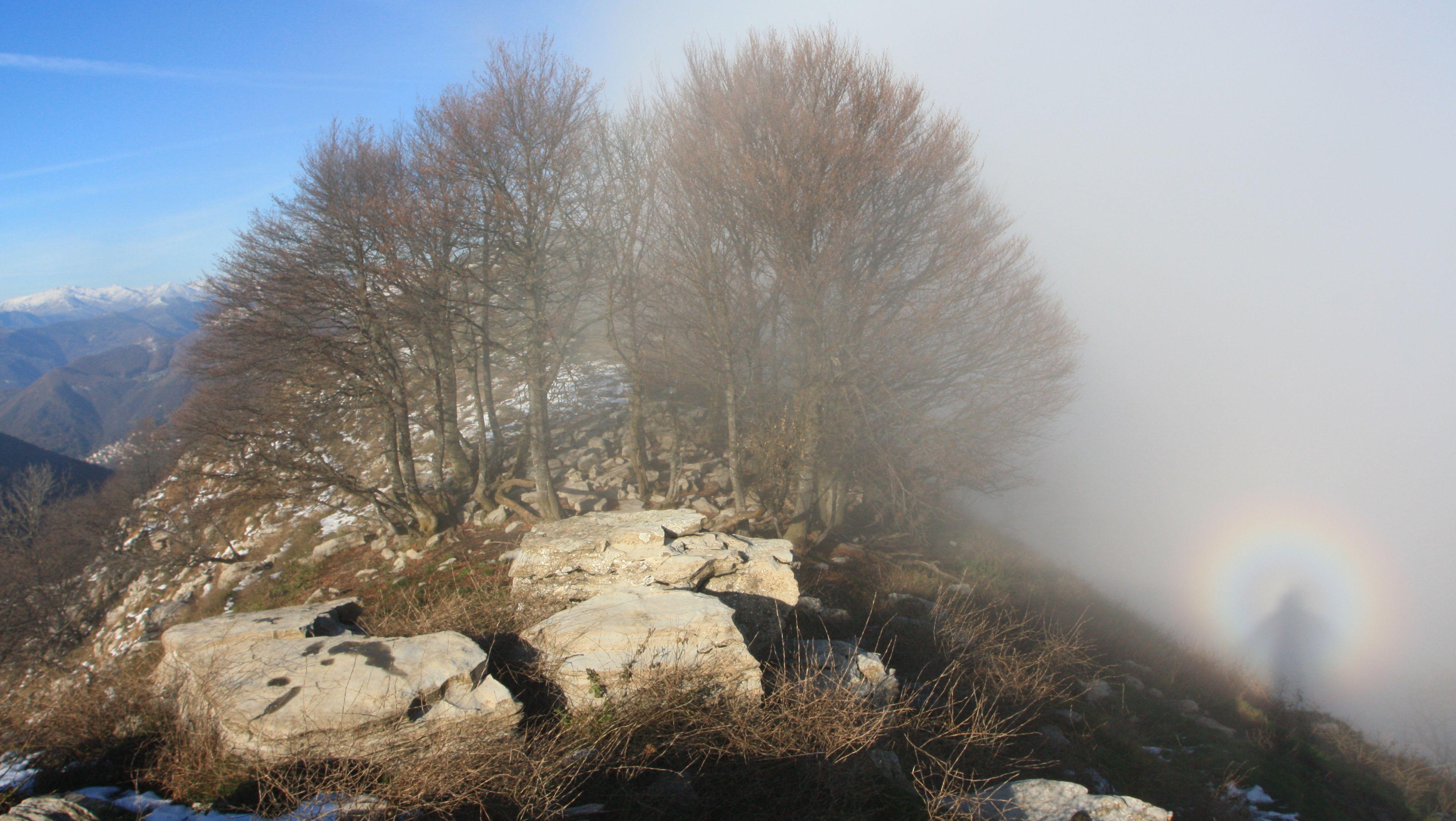 Brocken spectre on the Lombard Alps