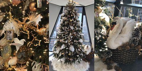 Christmas decoration, Christmas tree, Colorado spruce, Christmas ornament, Tree, Christmas, Branch, Interior design, Pine, Plant,