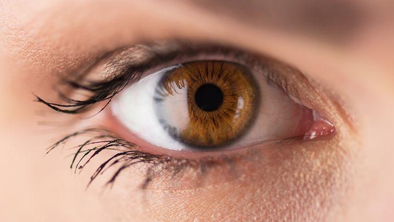 Risultati immagini per brown eyes