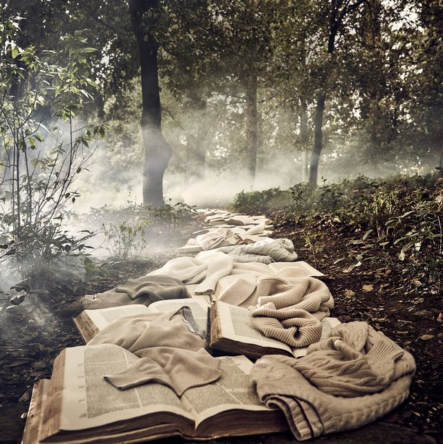 sweaters and books in a forest