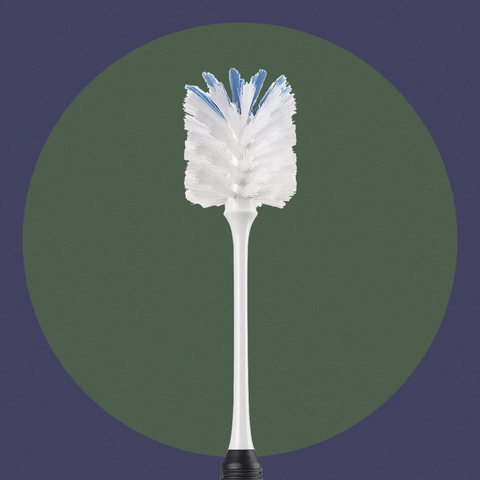 Feather, Leaf, Plant, Grass, Tree,