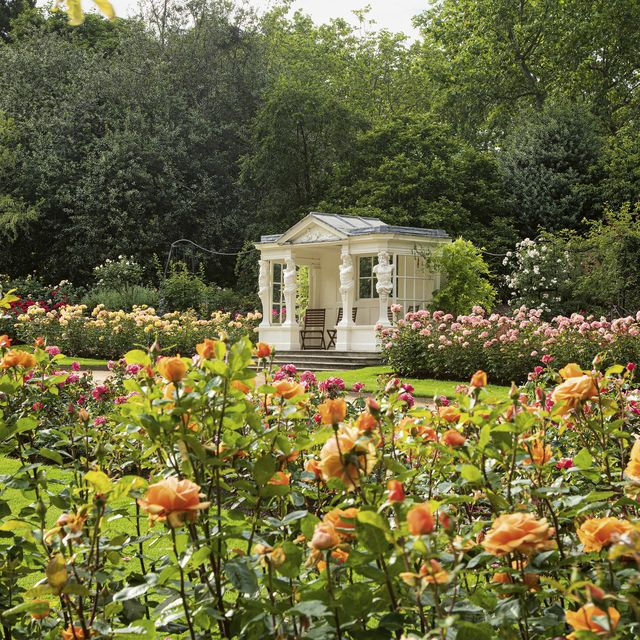 buckingham palace gardens revealed in a new book