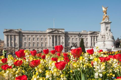 Buckingham Palace Is In Bloom: How The Royals Are Celebrating Spring