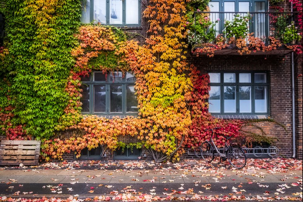 9 Things You Should Do to Your Home Before Fall Starts