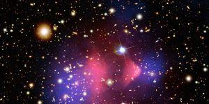 Bullet cluster galaxies