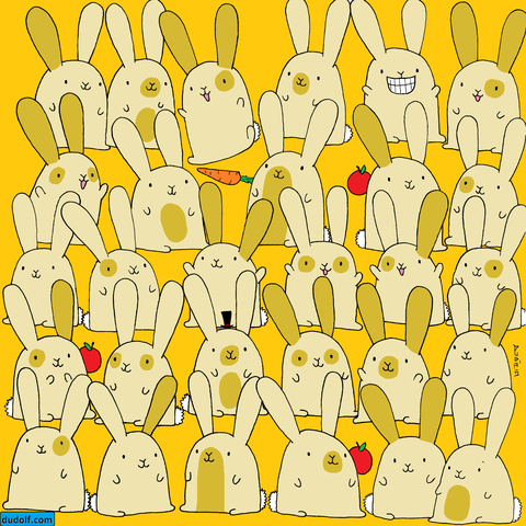 viral brain teasers - bunny