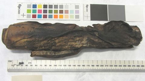 Rock, Wood, Tree, Geology,