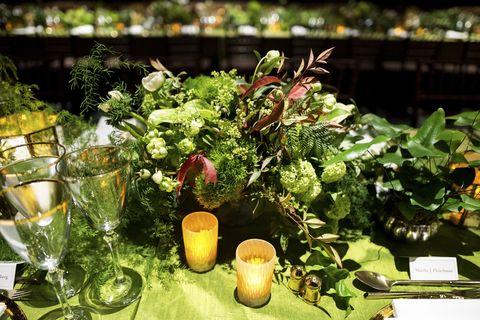 Plant, Flower, Botany, Table, Floristry, Houseplant, Floral design, Herb, Vegetable, Centrepiece,