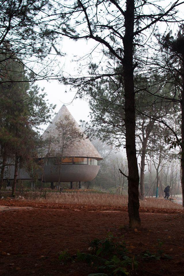 mushroom, casa de madera en el bosque en china