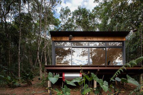 cabaña de madera contrachapada y acero corrugado en el bosque