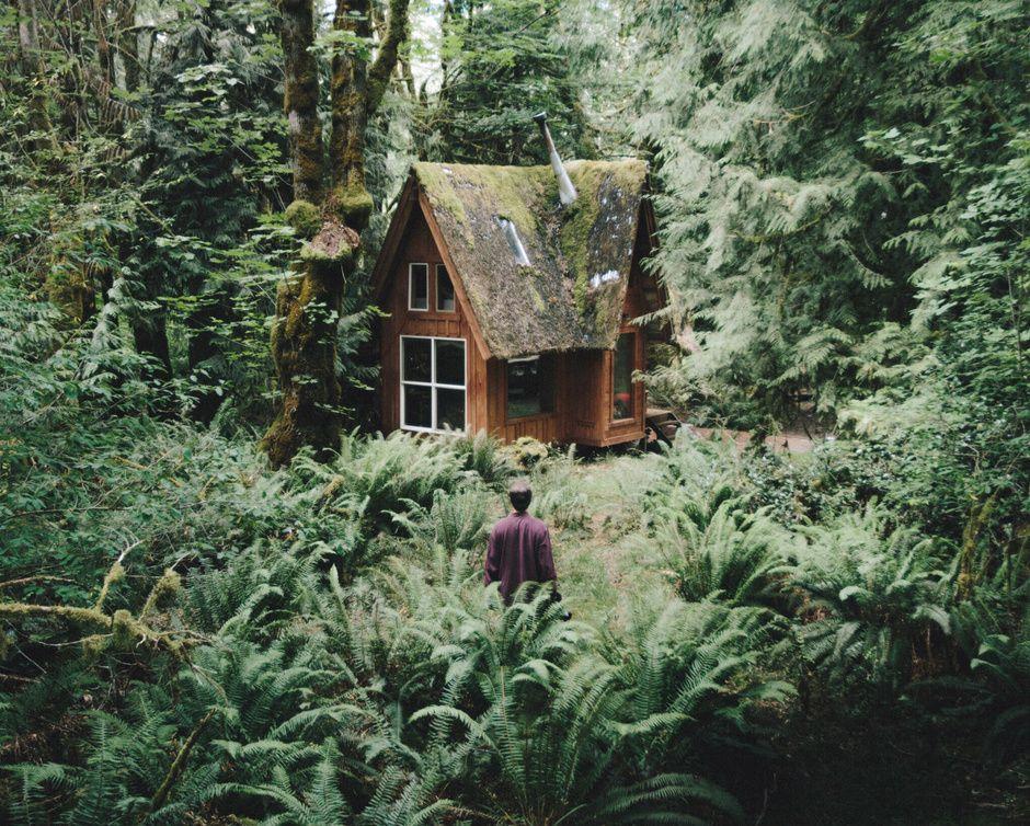 Ya puedes vivir en una cabaña como las de los Ewoks o de los Hobbits - Cabañas en árboles