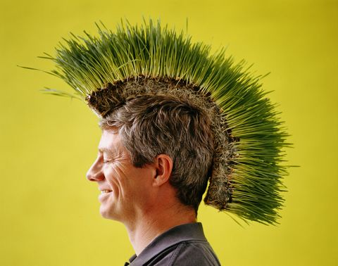 Man with turf of wheat grass on head, sideview