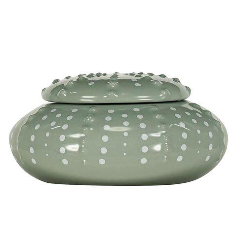 Cajita de cerámica con forma de erizo de mar