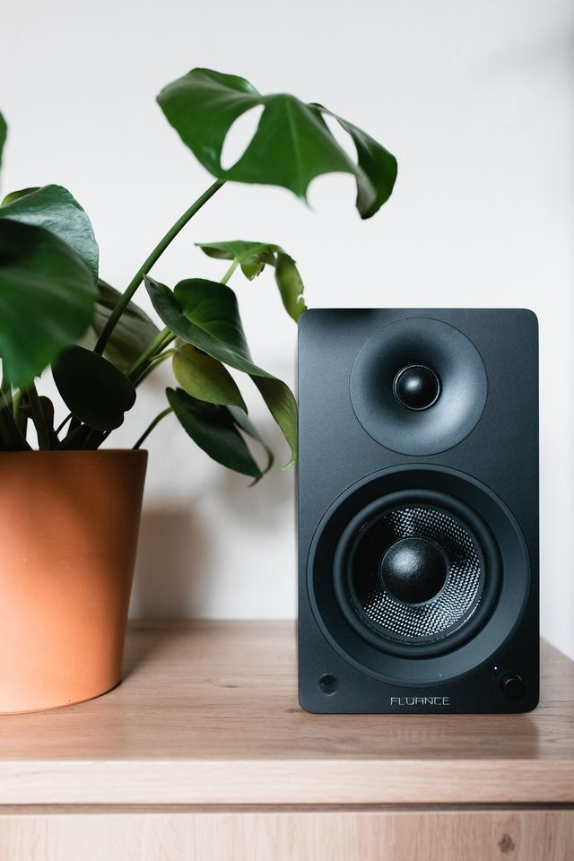 plant next to music speaker