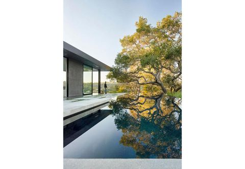 THE BIG GLAZED SURFACES OF OAK PASS HOUSE, CONTEMPORARY VILLA DESIGNED BY WALKER WORKSHOP, GIVES RELAXING VIEWS ON THE GARDEN AND ON THE INFINITY SWIMMING POOL. THE BIG OAK TREE IS REFLECTED ON THE SURFACE OF THE WATER