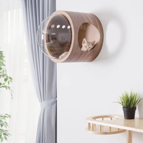 Cama futurista para gatos
