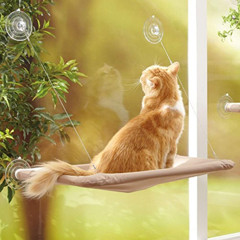 Cama para gatos en la ventana con ventosas