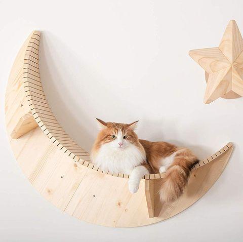 Cama con forma de luna para gatos