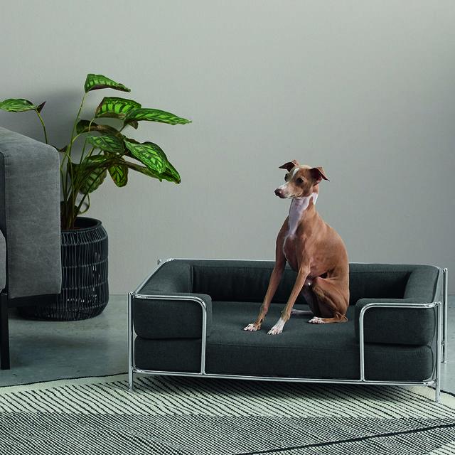 Cama de mascotas modelo Piet de MADE