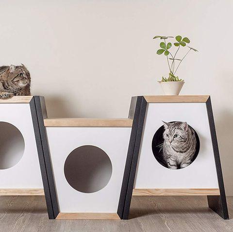 Cama y mesa para gatos