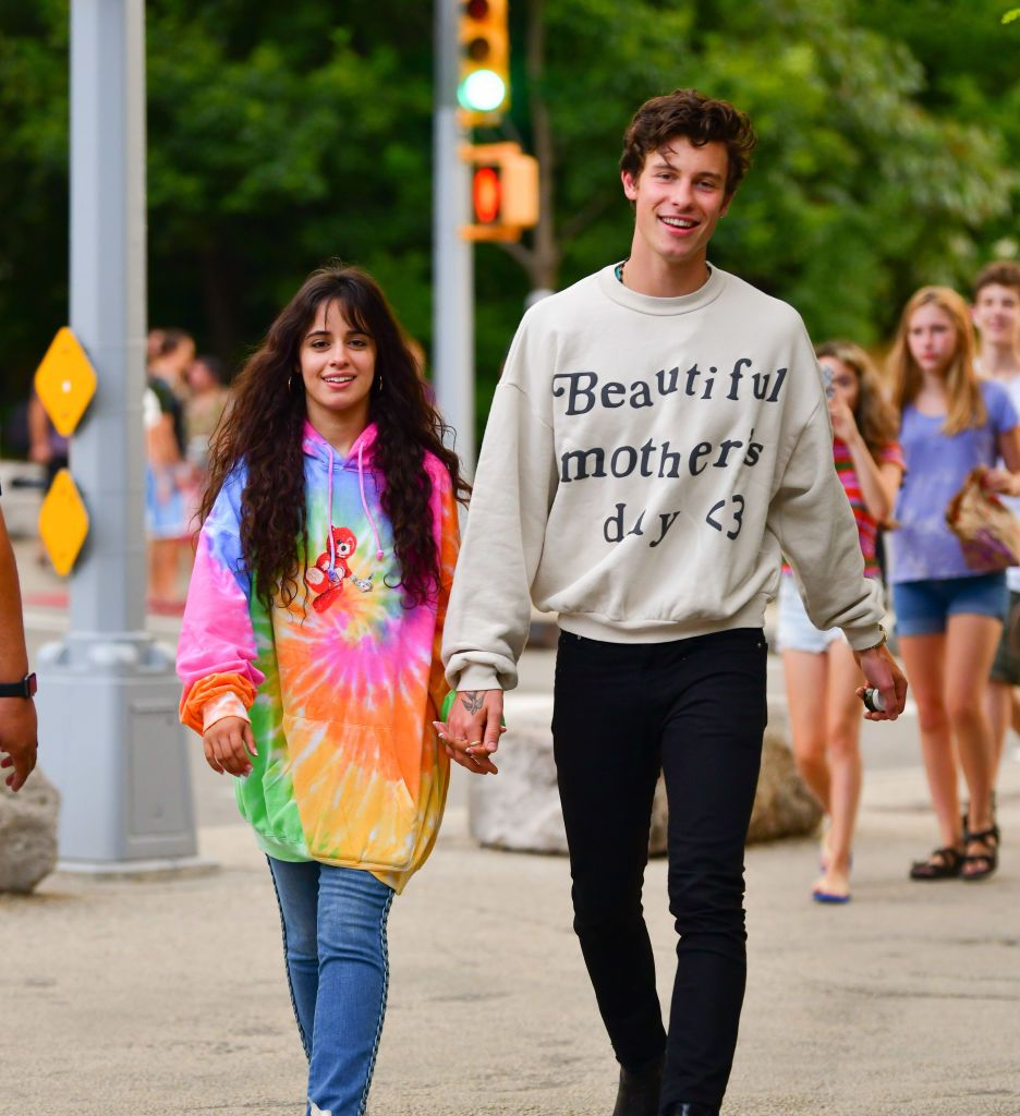Camila Cabello Opened Up About Being in Love With Shawn Mendes