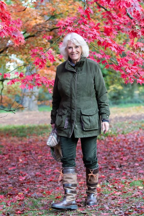the duchess of cornwall visits westonbirt arboretum
