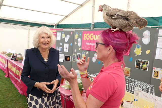the prince of wales and the duchess of cornwall attend the great yorkshire show