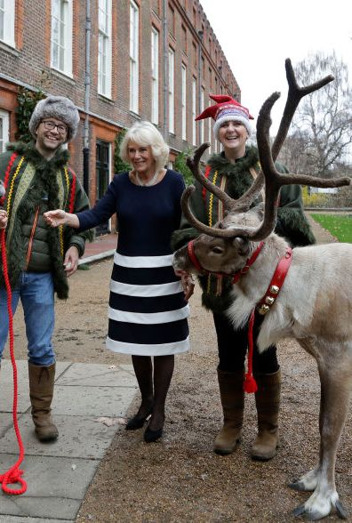 The Duchess Of Cornwall Decorates The Clarence House Christmas Tree With Families Support By Helen & Douglas House