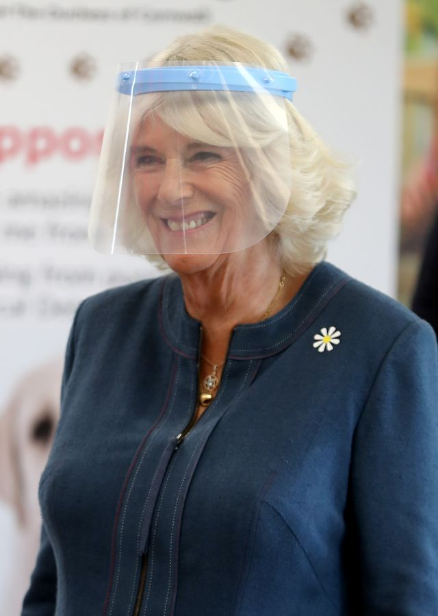 the duchess of cornwall visits medical detection dogs