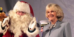 Camilla, Duchess Of Cornwall Switches On Christmas Lights In Bath