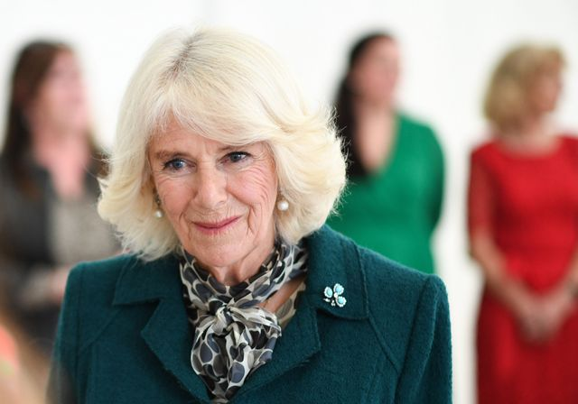 the prince of wales and duchess of cornwall visit northern ireland