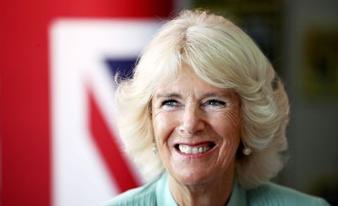 How Camilla Parker Bowles' Net Worth Has Skyrocketed Since Marrying Prince Charles