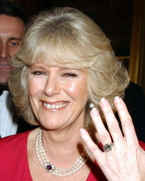 prince charles and camilla parker bowles announce their engagement   februaury 10, 2005