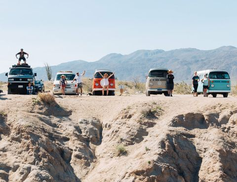 vintage surfari wagons
