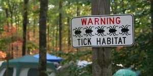lyme disease symptoms — campground with tick sign